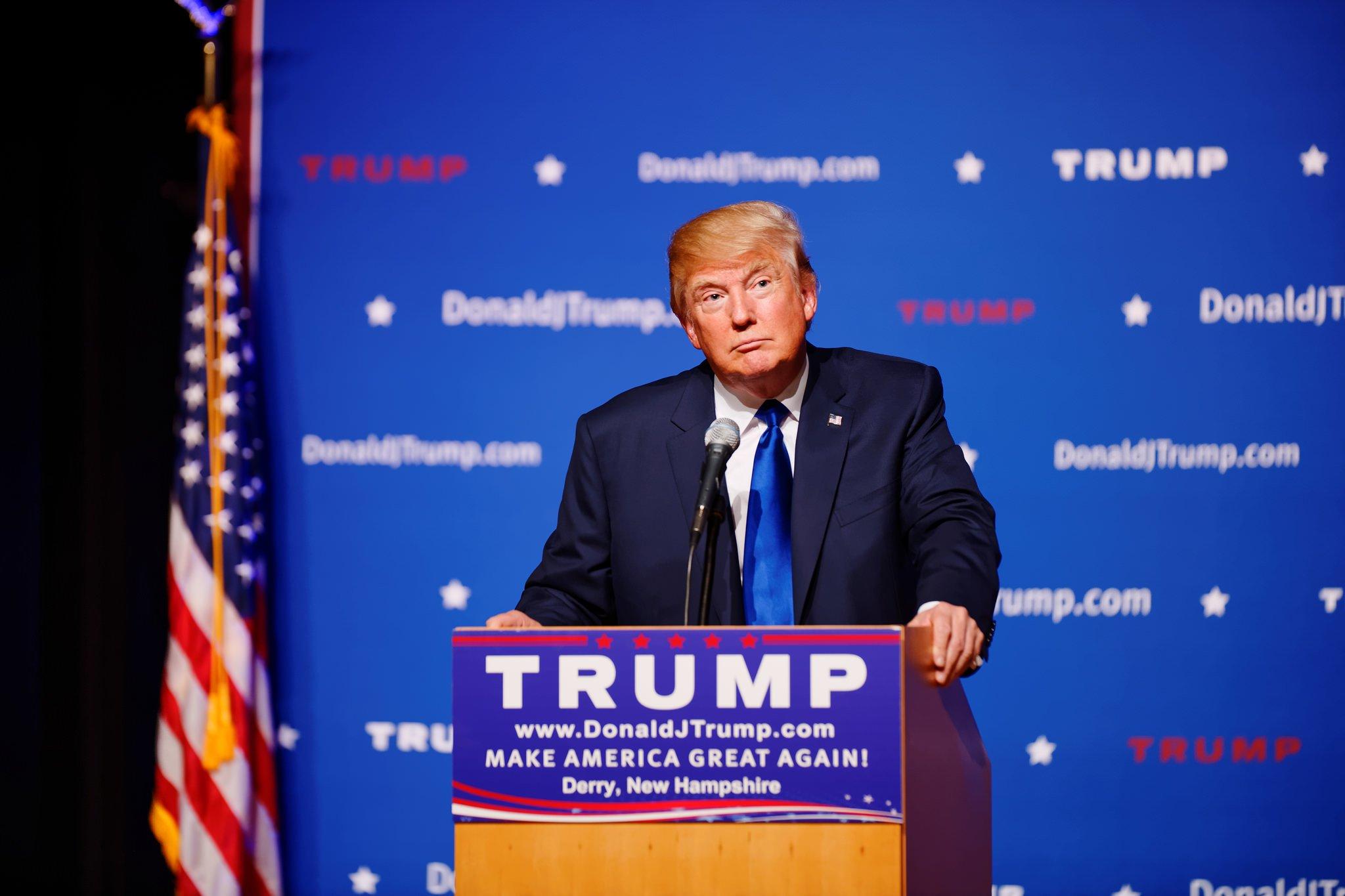 Mr Donald Trump di Michael Vadon